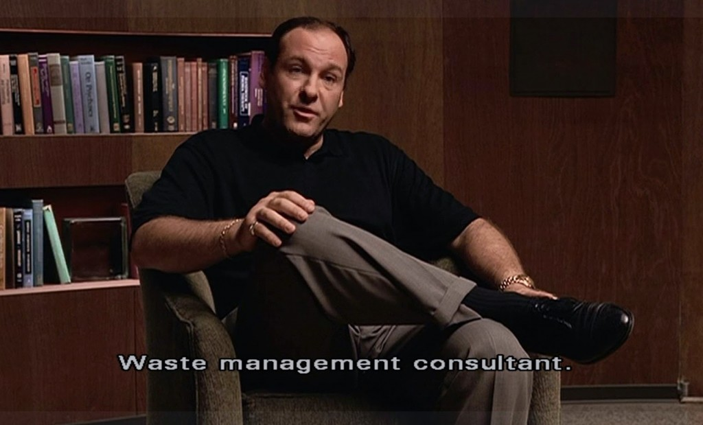 Waste Management Consultant